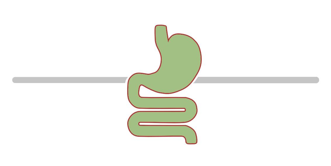 Magen Darm Erkrankungen